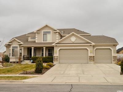 Davis County Single Family Home For Sale: 1338 W 3150 S