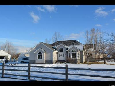 Eagle Mountain Single Family Home For Sale: 1818 Valley View Ln