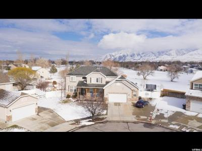 Tooele County Single Family Home For Sale: 58 Galley Ln