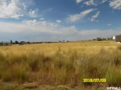 Tooele County Residential Lots & Land For Sale: 627 E Nicole Way