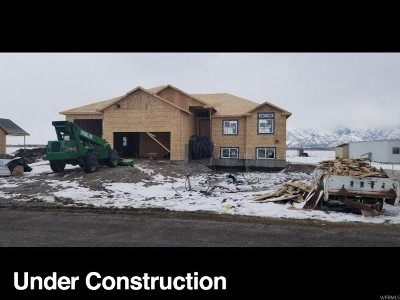 Tremonton Single Family Home For Sale: 10738 N 8400 W
