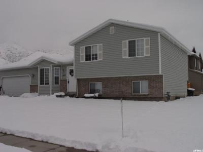 Tooele Single Family Home For Sale: 997 W 1080 S