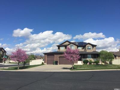 Davis County Single Family Home For Sale: 1243 S 1650 W
