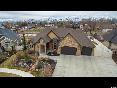 Riverton Single Family Home For Sale: 12376 S Juniper Haven Dr