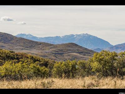 Wasatch County Residential Lots & Land For Sale: 1385 E Lasso Trl