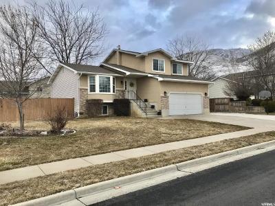 Davis County Single Family Home For Sale: 290 W 1350 N