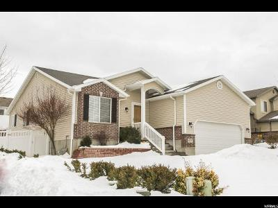 West Jordan Single Family Home For Sale: 6147 W Nellies S