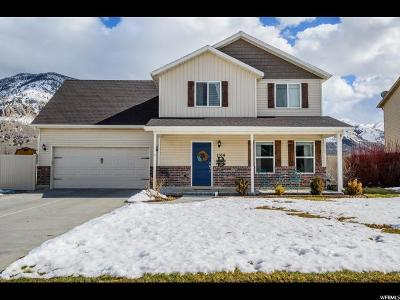 Brigham City Single Family Home For Sale: 1164 N 665 W