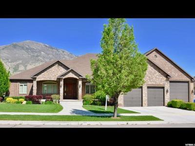 Pleasant Grove Single Family Home For Sale: 3598 N 1450 W