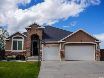 Single Family Home For Sale: 317 E Box Elder Dr