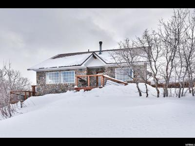 Wasatch County Single Family Home For Sale: 10240 E Lake Pines Dr