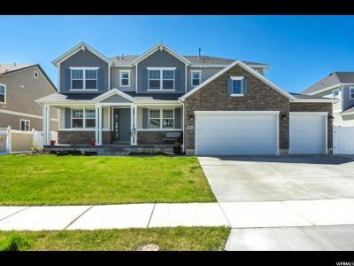 Riverton Single Family Home For Sale: 3861 W Tenacity Cir S