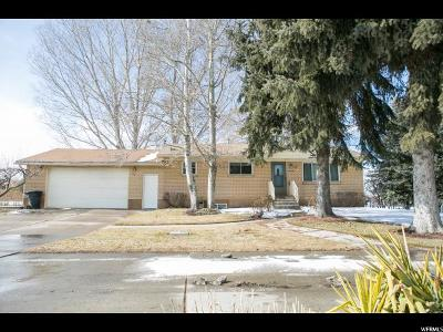 Single Family Home For Sale: 3369 S Main St