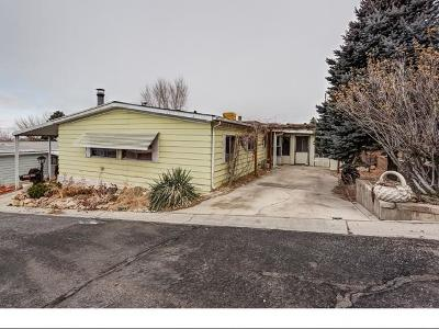 Orem Single Family Home For Sale: 1076 W 490 N