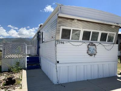 Tooele UT Single Family Home For Sale: $25,000