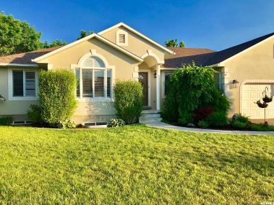 Sandy Single Family Home For Sale: 336 E Jerand Way