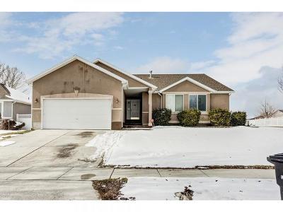 West Jordan Single Family Home For Sale: 7552 S Park Village Dr W