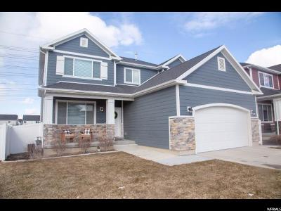 Salt Lake County Single Family Home For Sale: 958 W Freedom Point Way