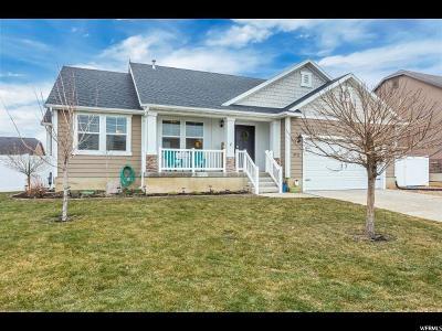 Springville Single Family Home For Sale: 972 W 1550 S