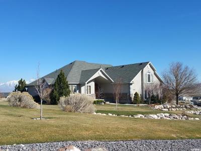 Eagle Mountain Single Family Home For Sale: 9568 N Night Hawk Ln E