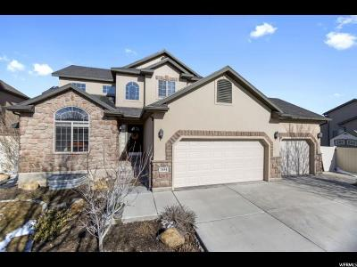 Lehi Single Family Home For Sale: 1894 W Colony Pointe Dr