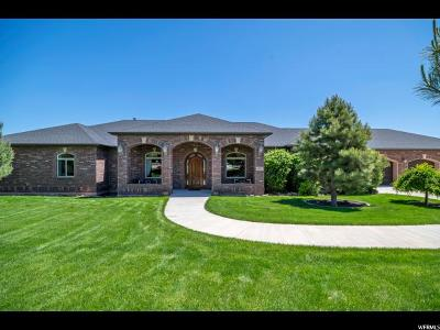 Payson Single Family Home For Sale: 8939 S 6200 W