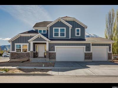 Spanish Fork Single Family Home For Sale: 1123 S 1510 E