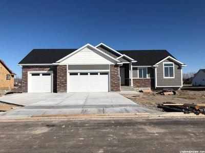 Tremonton Single Family Home For Sale: 1095 E 250 S