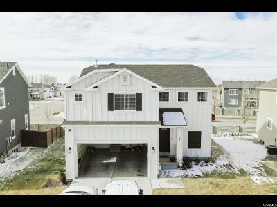 Vineyard Single Family Home For Sale: 87 N 410 E