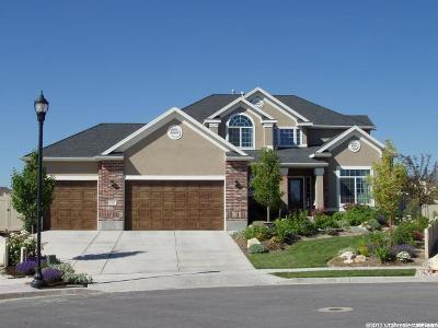 West Jordan Single Family Home For Sale: 6383 W Rockport Dr