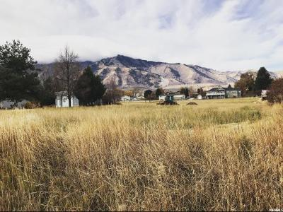 Mendon Residential Lots & Land For Sale: 65 N 100 W