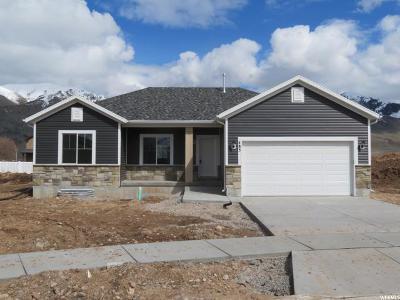Hyrum Single Family Home For Sale: 483 S 770 E