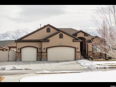 West Jordan Single Family Home For Sale: 8853 Tintic Ln