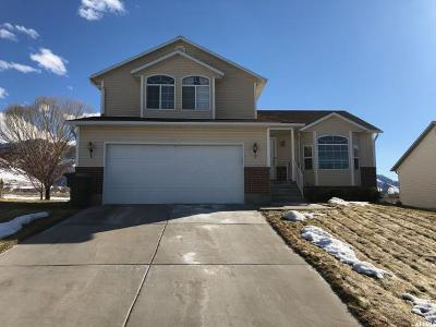 Tooele Single Family Home For Sale: 1298 E 850 N