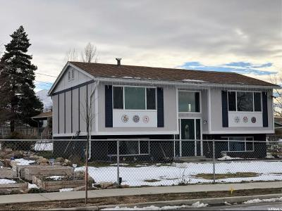 Tooele Single Family Home For Sale: 520 E Valley Vw N