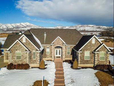 Highland Single Family Home For Sale: 11769 N Sunset Hills Dr