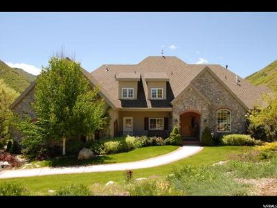Springville Single Family Home For Sale: 1154 S Hobble Creek Cyn