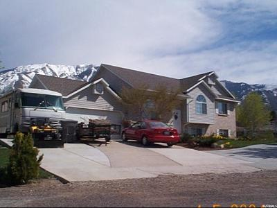 Elk Ridge Single Family Home For Sale: 332 E Magellan N