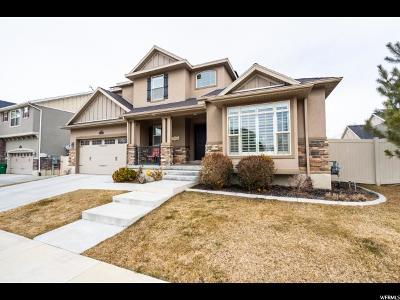 Sandy Single Family Home For Sale: 223 E Flicker Dr S