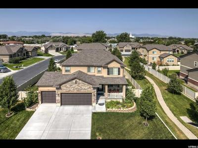 South Jordan Single Family Home For Sale: 1032 W Venenzia View Way S