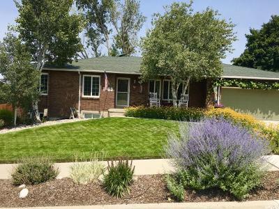 Sandy Single Family Home For Sale: 1963 E Falcon Hill Cir S