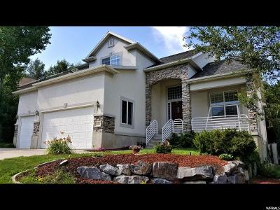 Draper Single Family Home For Sale: 14058 S New Saddle Rd