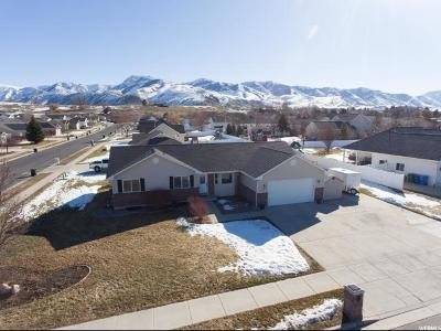 Smithfield Single Family Home For Sale: 518 N 100 E