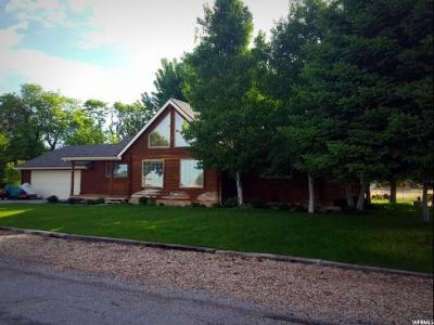 Single Family Home For Sale: 115 S 500 E