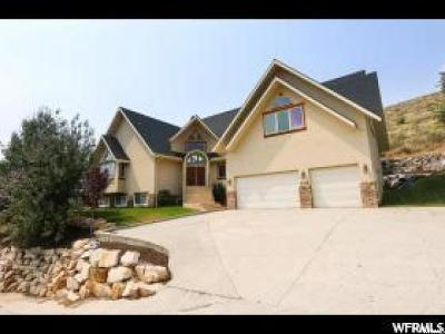 Single Family Home For Sale: 5395 Pioneer Fork Rd