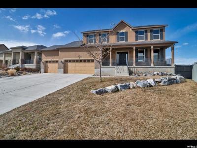 Eagle Mountain Single Family Home For Sale: 3545 E Franklin Dr