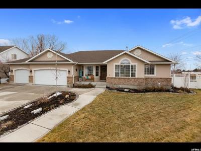 American Fork Single Family Home For Sale: 914 E 1300 N