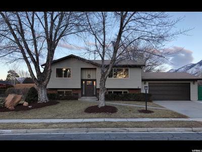 Sandy Single Family Home For Sale: 11275 S Sandy Gulch Rd E