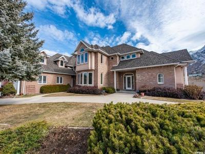 Sandy Single Family Home For Sale: 9093 S Canyon Gate Cir E