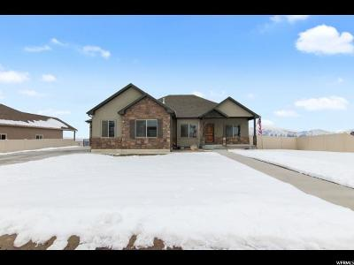 Elk Ridge Single Family Home For Sale: 425 Meadow Lark Ln